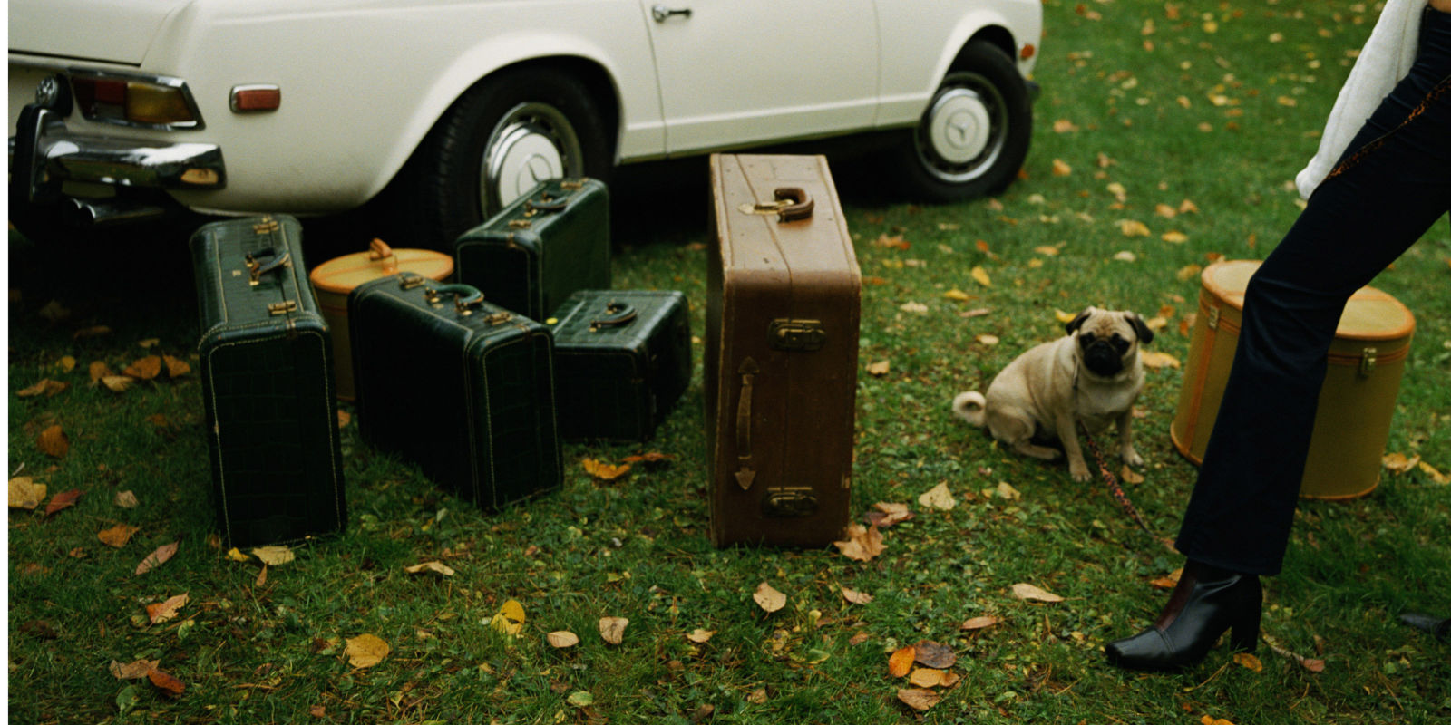 Best pet friendly hotels in new york city hotels that for Dog friendly hotel nyc
