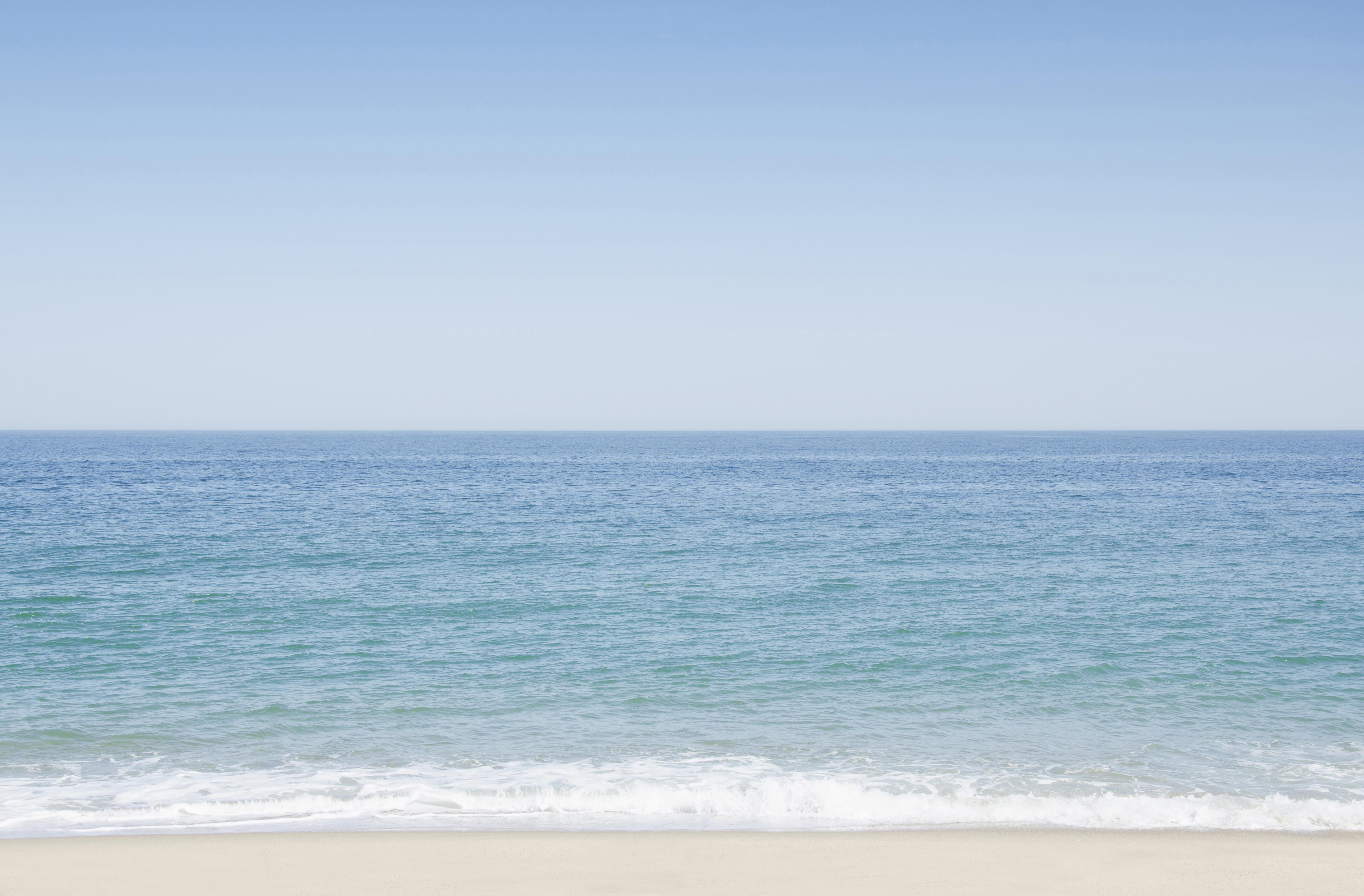 Best Brunch In Ocean Beach