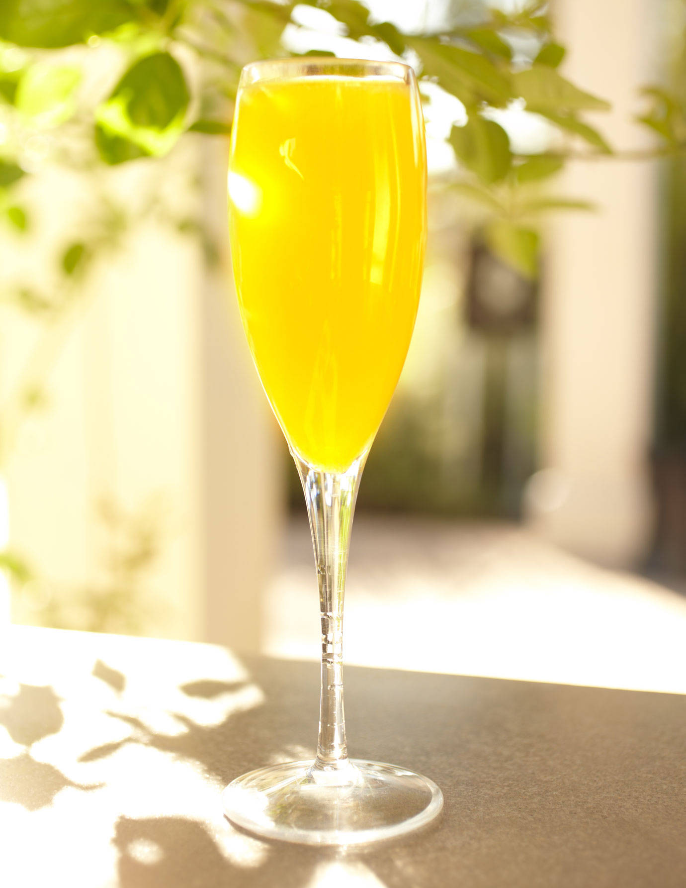 6 Champagne Brunch Cocktails Recipes For Champagne Cocktails