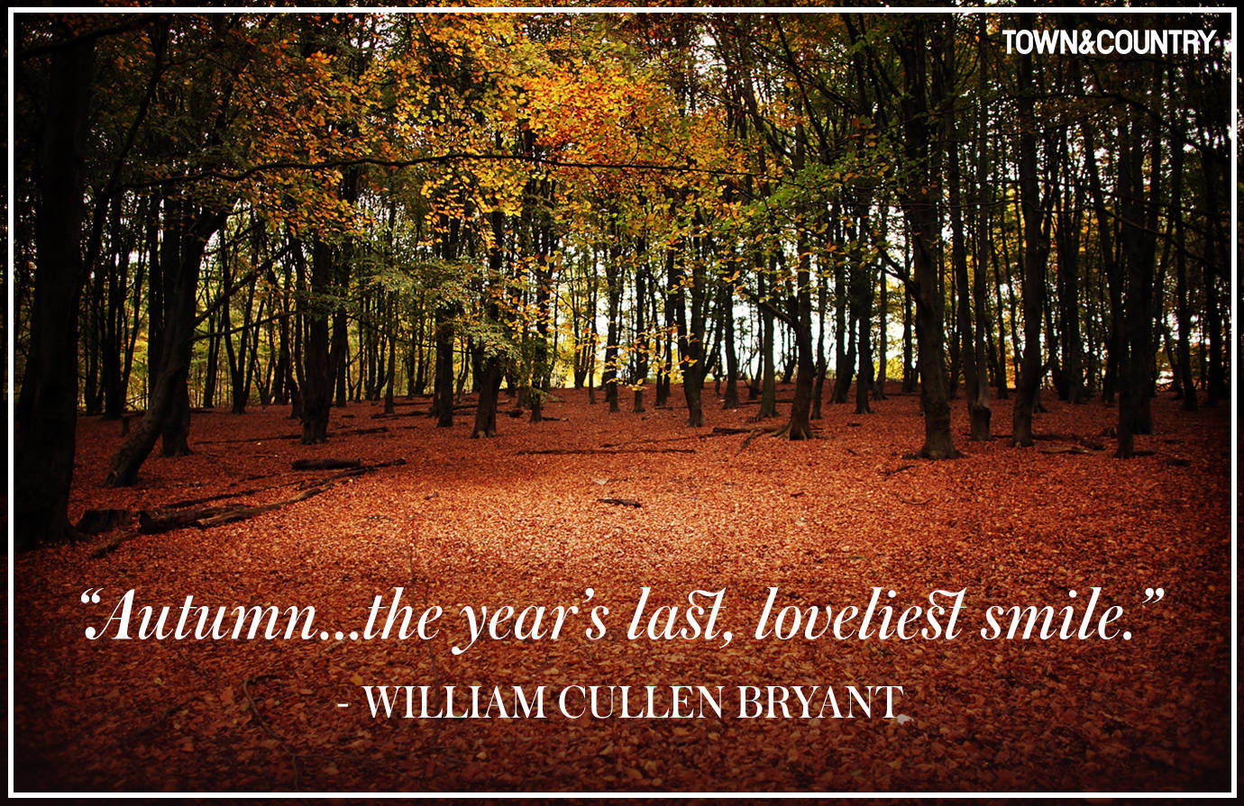 Fall Quotes About Love Best Autumn Dreamers Quotes  Inspiring Quotes And Words In Life